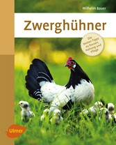 Zwerghühner - Die besten Tipps zu Rassen, Haltu...