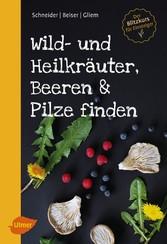 Wild- und Heilkräuter, Beeren und Pilze finden ...