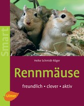 Rennmäuse - Freundlich - clever - aktiv