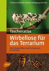 Taschenatlas Wirbellose für das Terrarium - 180...