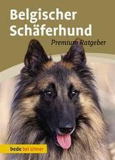 Belgischer Schäferhund - Malinois, Groenendael,...