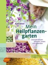 Mein Heilpflanzengarten - Gesunde Kräuter pflan...