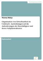 Organisation von Erwerbsarbeit im Umbruch - Aus...