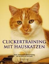 Clickertraining mit Hauskatzen - Tricks, Kunsts...