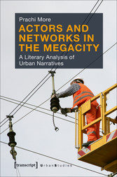 Actors and Networks in the Megacity - A Literar...