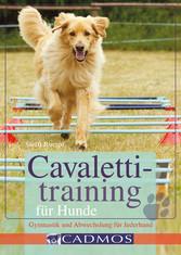 Cavalettitraining für Hunde - Gymnastik und Abw...