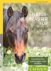 Naturheilkräuter für Pferde - Kranhheiten vorbe...