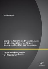 Energiewirtschaftliche Potenzialanalyse für Str...