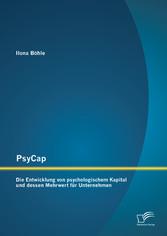 PsyCap - Die Entwicklung von psychologischem Ka...