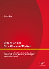 Expansion der EU - Chancen / Risiken: Auswertun...