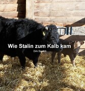 Wie Stalin zum Kalb kam