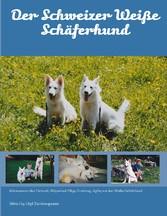 Der Schweizer Weiße Schäferhund