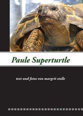 Paule Superturtle
