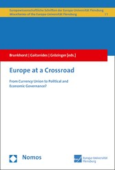 Europe at a Crossroad - From Currency Union to ...