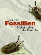 Fossilien - Meilensteine der Evolution