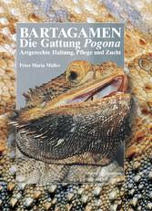 Bartagamen - Die Gattung Pogona - Artgerechte Haltung, Pflege und Zucht