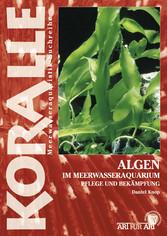 Algen im Meerwasseraquarium - Pflege und Bekämp...