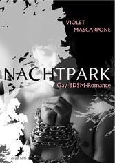 Nachtpark - Gay-BDSM-Romance