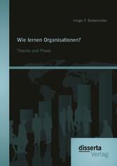 Wie lernen Organisationen? Theorie und Praxis