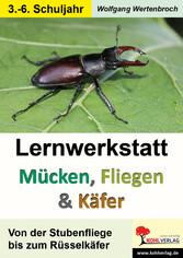 Lernwerkstatt Mücken, Fliegen und Käfer - Von d...