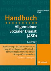 Fachkonzept Sozialraumorientierung: Grundlagen ...