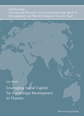 Leveraging Social Capital for Knowledge Develop...