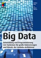 Big Data - Entwicklung und Programmierung von S...