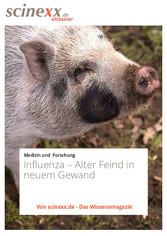 Influenza - Alter Feind in neuem Gewand