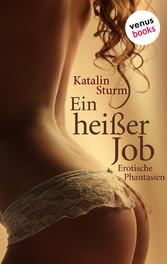 Sexy Secretaries: Ein heißer Job - Erotische Ph...