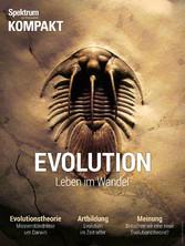 Spektrum Kompakt - Evolution - Leben im Wandel