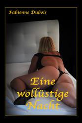 Eine wollüstige Nacht - Eine erotische Geschichte von Fabienne Dubois