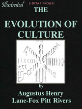 Evolution of the Culture
