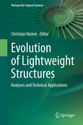 Evolution of Lightweight Structures - Analyses ...