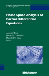 Phase Space Analysis of Partial Differential Equations