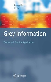 Grey Information Theory and Practical Applications
