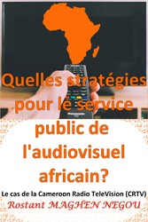 'audiovisuel africain? : Le cas de la Cameroun Radio TeleVision (CRTV) What strategies for the public service of the African audiovisual sector? : The case of Cameroon Radio TeleVision (CRTV)
