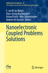Nanoelectronic Coupled Problems Solutions