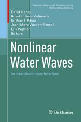 Nonlinear Water Waves An Interdisciplinary Interface
