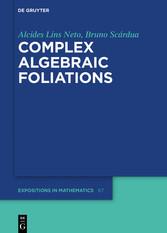 Complex Algebraic Foliations