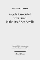 Angels Associated with Israel in the Dead Sea Scrolls Angelology and Sectarian Identity at Qumran
