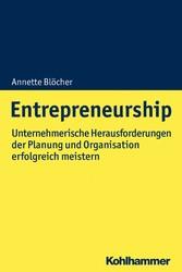 Entrepreneurship Herausforderungen der Planung und Organisation unternehmerisch lösen
