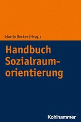 Handbuch Sozialraumorientierung