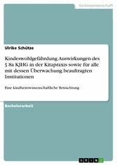 Kindeswohlgefährdung. Auswirkungen des § 8a KJHG in der Kitapraxis sowie für alle mit dessen Überwachung beauftragten Institutionen Eine kindheitswissenschaftliche Betrachtung