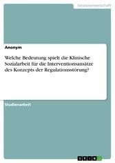 Welche Bedeutung spielt die Klinische Sozialarbeit für die Interventionsansätze des Konzepts der Regulationsstörung?