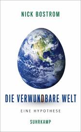 Die verwundbare Welt Eine Hypothese