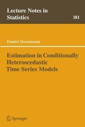 Estimation in Conditionally Heteroscedastic Time Series Models