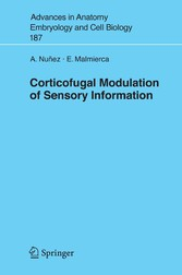 Corticofugal Modulation of Sensory Information