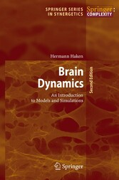 Brain Dynamics An Introduction to Models and Simulations