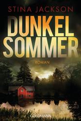 Dunkelsommer Der Nr.1-Bestseller aus Schweden - Roman
