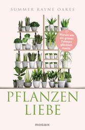 Pflanzenliebe Warum uns ein grünes Zuhause glücklich macht